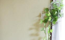 お家の中は断熱・保温機能の高い珪藻土で決まり!